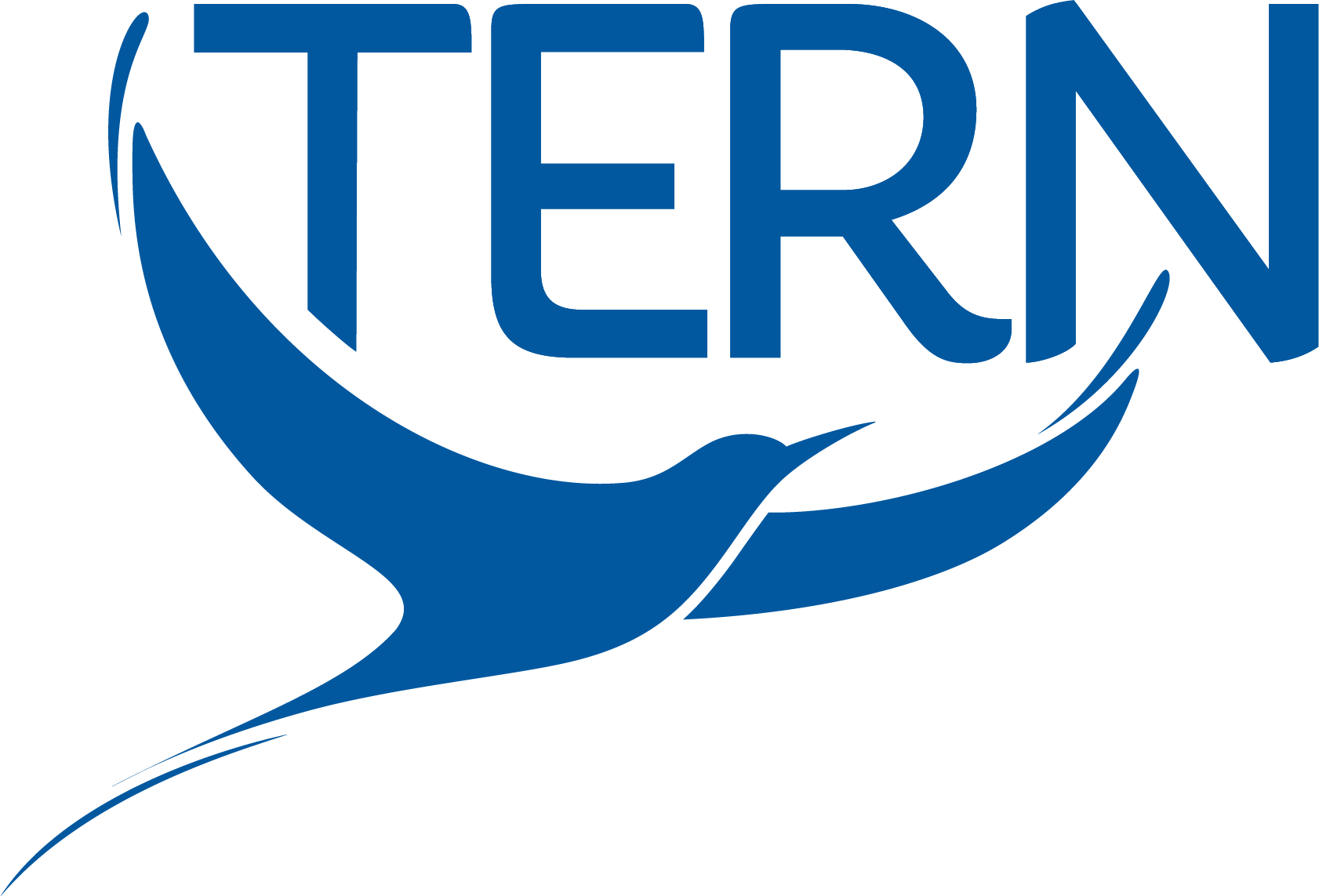 TERN [logo]
